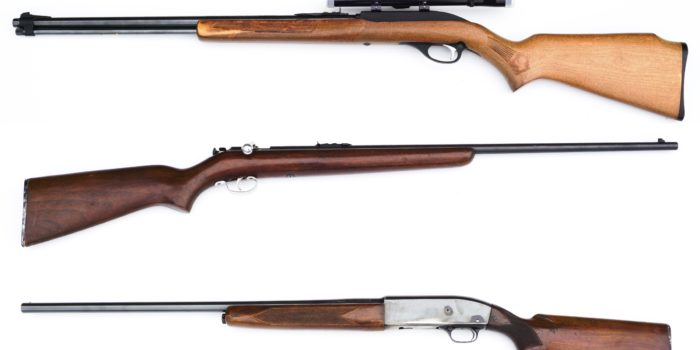Firearm & Hunting Auction