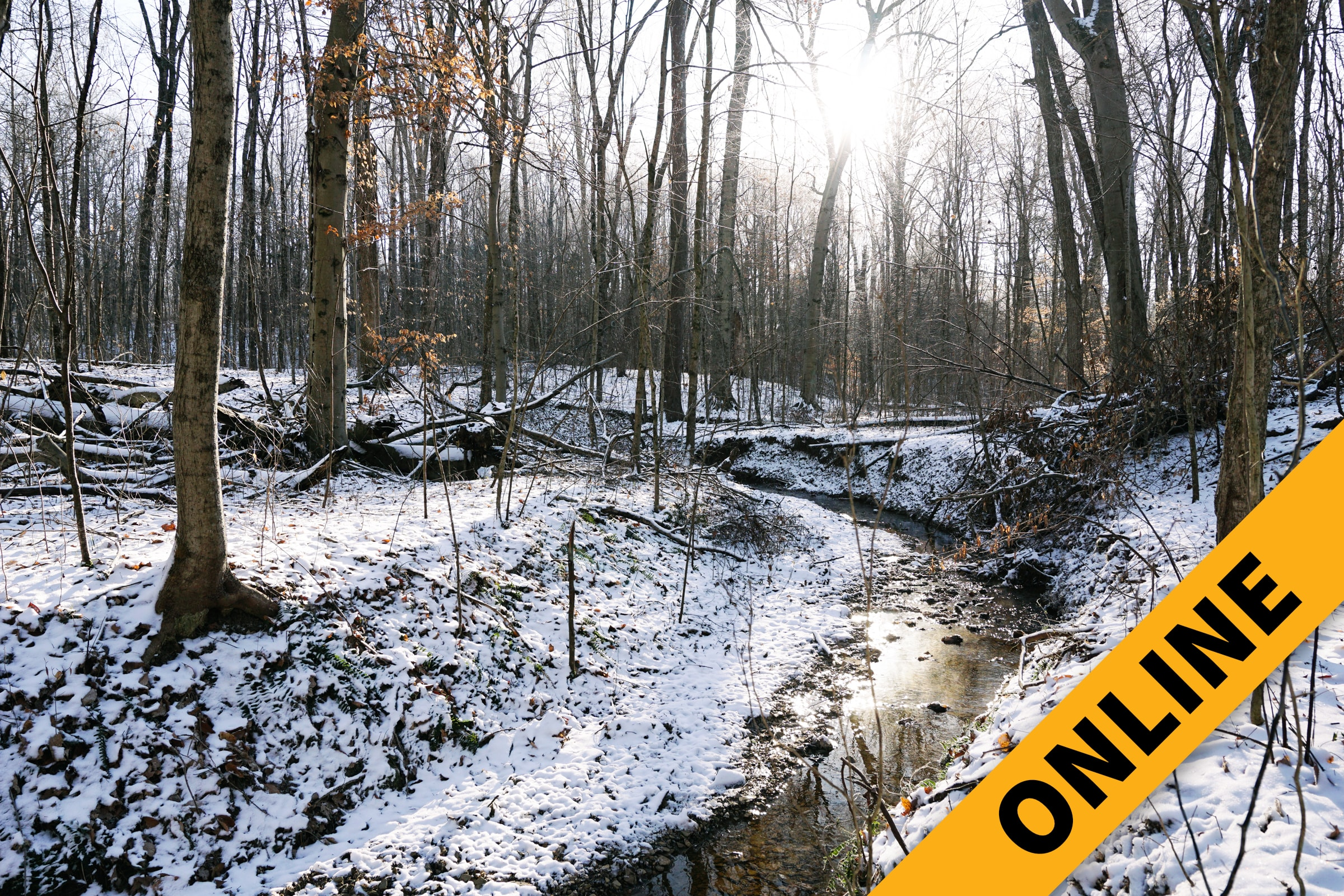021219 Old Vincennes Road Online Featured Overlay