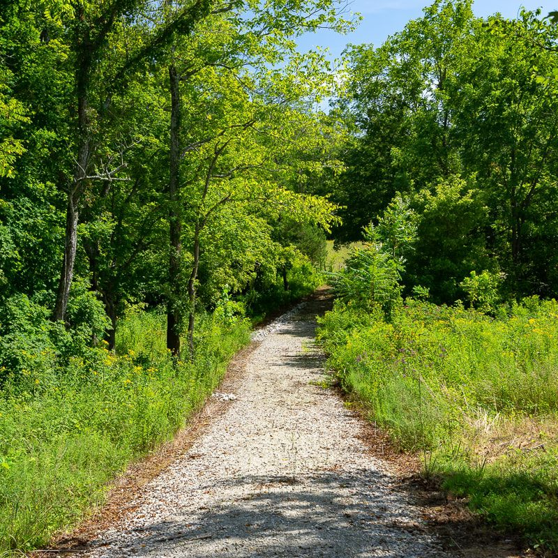 092119-Cooks-Mill-Road-Tract-2-2