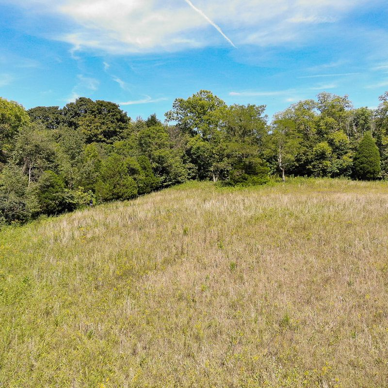 092119-Cooks-Mill-Road-Tract-2-4