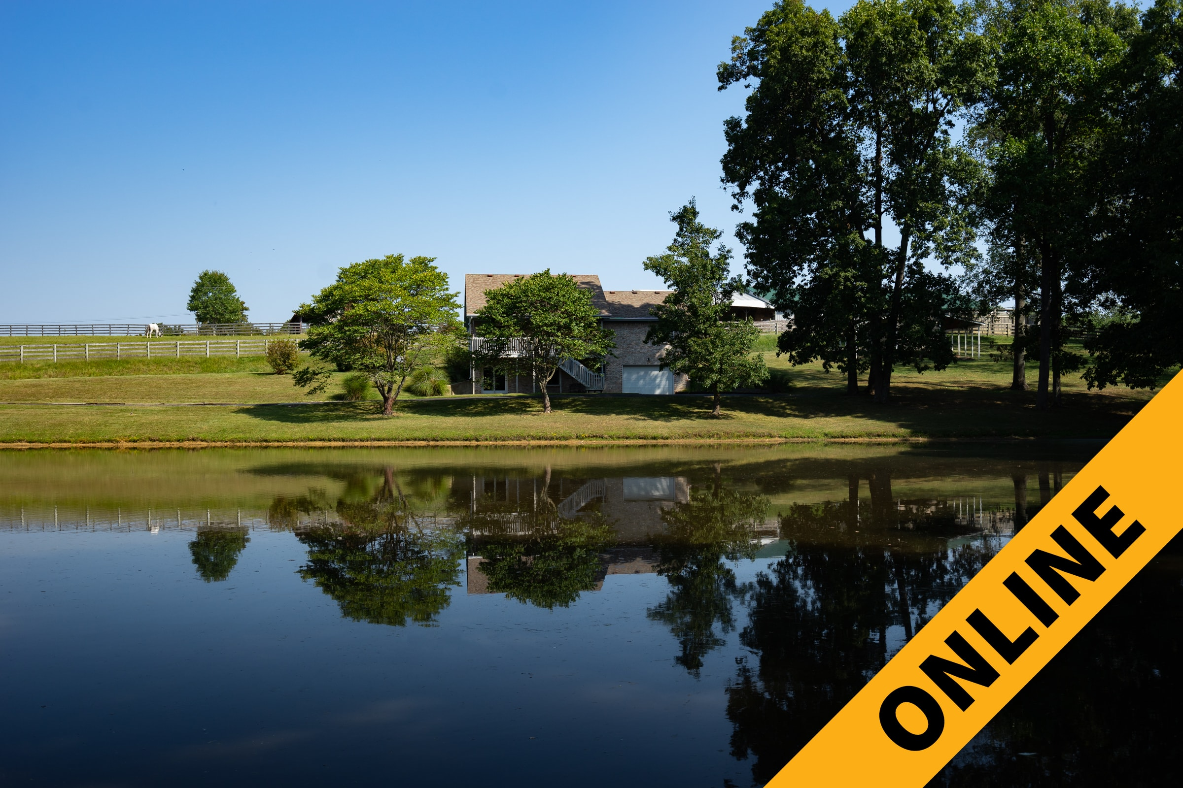 Seven Acres, Lake & Home Online Auction
