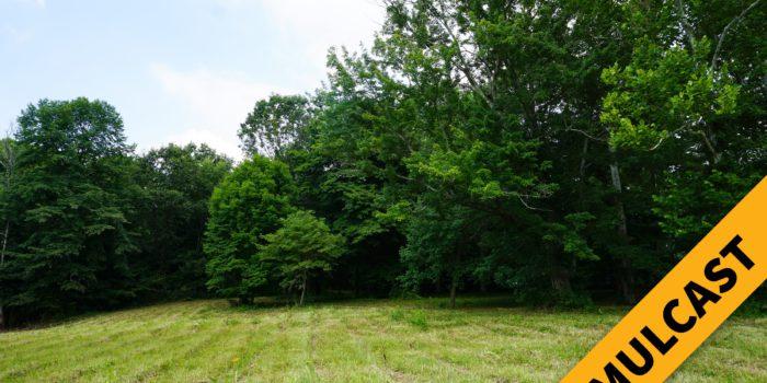 Pebble Creek Land Auction