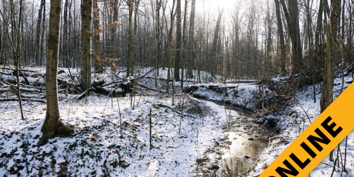 Online Floyd County Land Auction