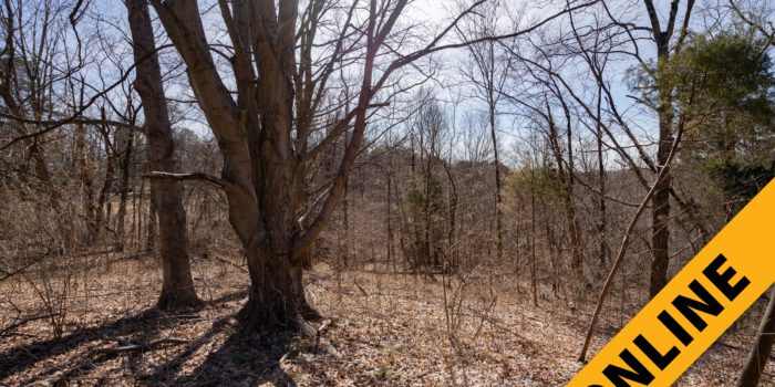 Floyd County Online Land Auction